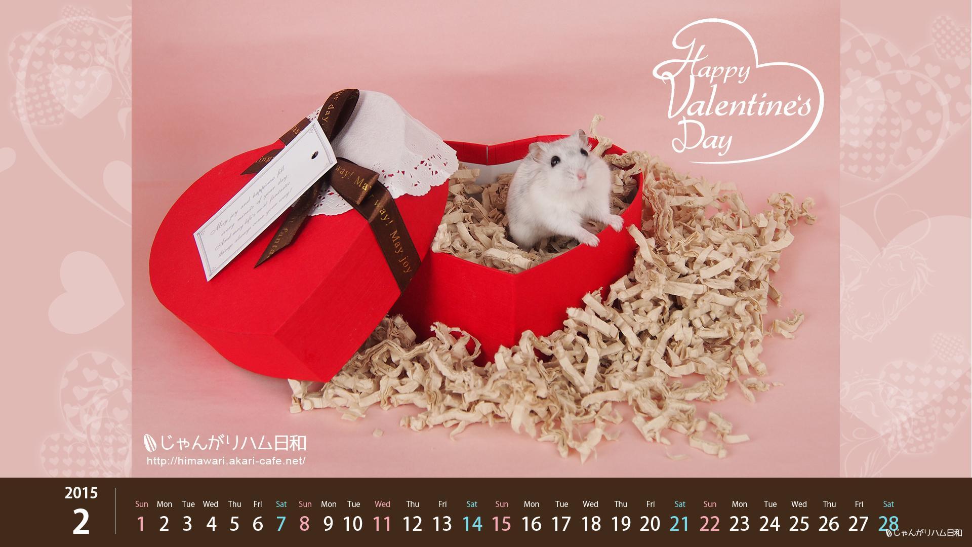 2015年2月ハムスターカレンダー・バレンタイン!