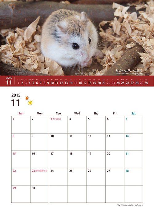 11月 ハムスター カレンダー