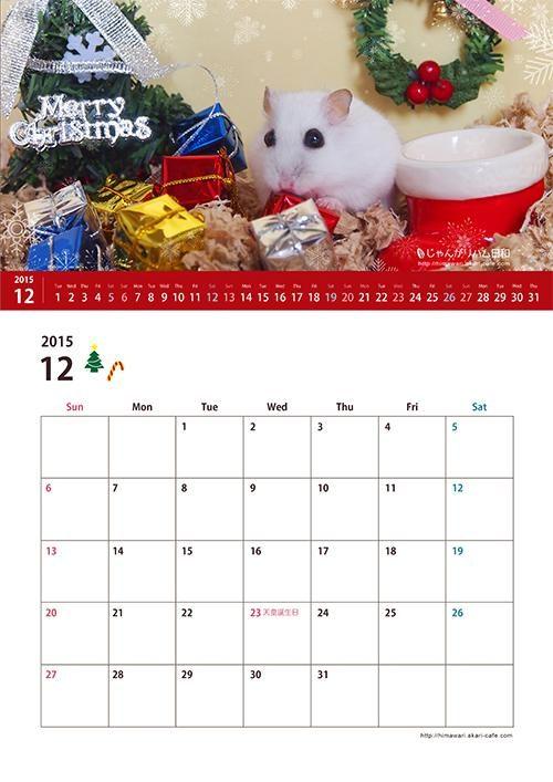 ハムスター12月カレンダー クリスマス