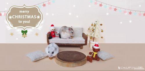 ハムスター希助とあられのクリスマス