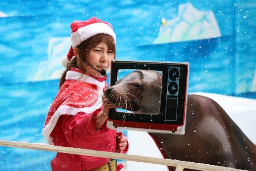 東北サファリパーク 福島県二本松市 2017年クリスマスイベント