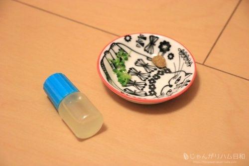 イエロージャンガリアン(プティング)ハムスター栗丸
