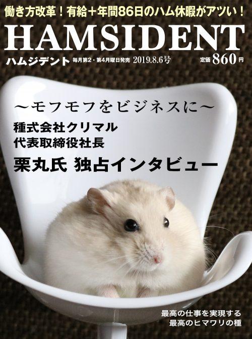 イエロージャンガリアン(プティング)ハムスター栗丸 HAMSIDENT PRESIDENT