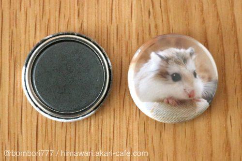 ハムスターの缶マグネット(ハム缶マグネット)