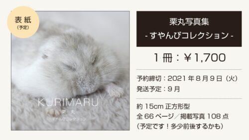 栗丸写真集 -すやんぴコレクション-